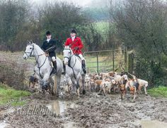 The hunt Constellation, Transformers, British Countryside, Fox Hunting, Horse World, The Fox And The Hound, Equestrian Style, My Ride, Cross Country