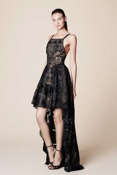 Black Lace Dress with Train - Marchesa Notte Spring 2017 Ready-to-Wear Fashion Show Collection