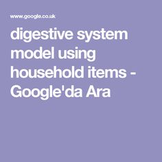 digestive system model using household items - Google'da Ara