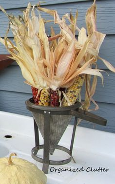 Indian Corn in a Vintage Berry Sieve (and I just happen to have one!)