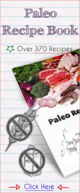 370 Delicious Paleo Recipes