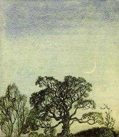 "Rackham's Moonlight in the Wood, an illustration from ""A Midsummer Night's Dream"""