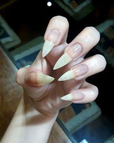 Natural Nail Shapes, Long Natural Nails, Long Stiletto Nails, Long Nails, Curved Nails, Cat Nails, Summer Acrylic Nails, Healthy Nails, Nail Inspo
