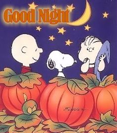 Good Night night snoopy goodnight good night goodnight quotes good nite goodnight quote