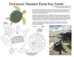 Myrtle the Sea Turtle | Downeast Thunder Farm