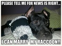 Apparently fox news is incorrect you can't marry other species or  inanimate objects.  Thanks for getting my hopes up. Congrats to all of those who are equal in the eyes of the law.
