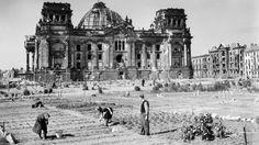 1946 Berlin - Gemüsebeete vor dem Rechstag, Mai 1946.