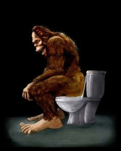 Bigfoot breaks into some Dude's Cabin and Totally takes a fat Dump in his toilet 11x14 fine art print