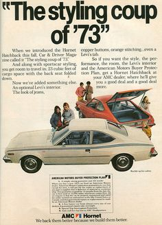 AMC Hornet - 1973 --very first car. Totaled it ( not my fault) not long after getting it.