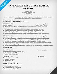 Insurance Executive Resume Sample (resumecompanion.com) | Resume Samples  Across All Industries | Pinterest | Executive Resume, Job Resume Samples  And Job ...