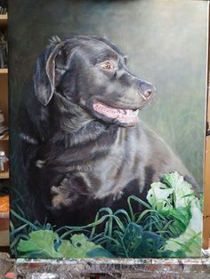 Commission finished Labrador Retriever, It Is Finished, Dogs, Artist, Animals, Labrador Retrievers, Animales, Animaux, Pet Dogs
