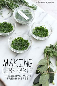 Gardening Herb Making Herb Paste - Preserve your Fresh Herbs - Learn how to make herb paste, a wonderful way to preserve herbs for culinary and medicinal uses! From parsley to sage to thyme, get creative in the kitchen. Cooking Tips, Cooking Recipes, Healthy Recipes, Preserve Fresh Herbs, Sauce Spaghetti, Herb Recipes, Recipes With Herbs, Oregano Recipes, Spices And Herbs