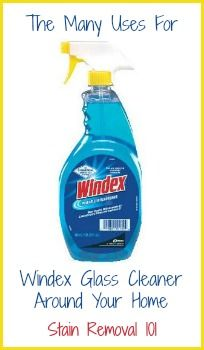 Uses for Windex around your home for things other than cleaning glass.