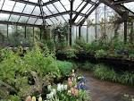 Lady Brockmore's orchid house Glasgow Botanic Gardens, Orchid House, Guest List, House Party, Summer 2016, Regency, Botanical Gardens, Orchids, Lady