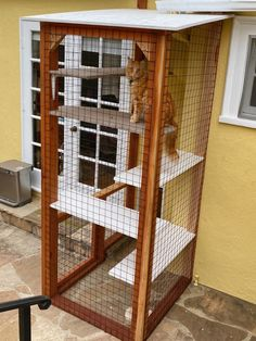 Diy Cat Enclosure, Outdoor Cat Enclosure, Cat Patios, Cat Wall Shelves, Cat Kennel, Cat Steps, Cat House Diy, Cat Run, Backyard Cottage