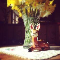 Little Bambi x (Taken with Instagram)