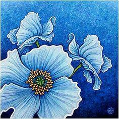 Cool Grace blue art flower poppy @A. Fraser.com