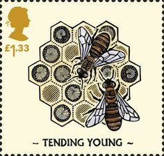 Celebrating the UK's bee population. The stamps feature illustrated images of various bee species from across the UK. Uk Stamps, Tattoo Themes, Postage Stamp Art, Bee Cards, Bee Tattoo, Mail Art, Stamp Collecting, Royal Mail, Book Art