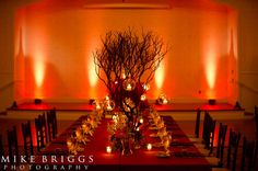 Woodland inspired reception decor (Flowers by Lee Forrest Design,photo by: Mike Briggs Photography)