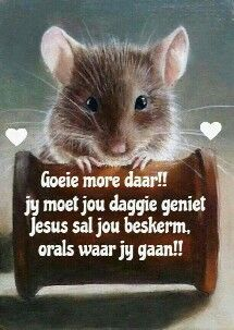 Goeie more... Greetings For The Day, Afrikaanse Quotes, Goeie More, Day Wishes, Good Morning Quotes, Christian Quotes, Beautiful Pictures, Inspirational Quotes, Faith