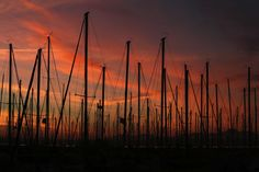 Sunset at Shilshole Bay Marina in Seattle | The Seattle Times