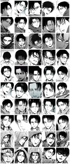 Still more facial expressions than Kristen Stewart! ^^ actually, I think Levi has more expressions than anyone else. But they change in small ways, so people who merely glance at him thinks he has one, when in reality, he has an unlimited amount. It's all in the way he moves and his eyes shine and the way he squeezes his leg when he's anxious or stressed.