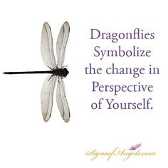 Dragonfly quotes and sayings. Dragonfly Symbolism, Dragonfly Quotes, Dragonfly Art, Dragonfly Tattoo, Dragonfly Meaning Spiritual, Dragonfly Images, Meant To Be Quotes, Change Quotes, Inspire Me
