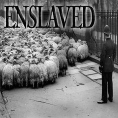 Enslaved - 2015 by ODD TV on SoundCloud