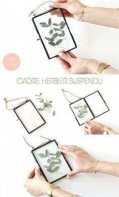 herbarium frame DIY! How to create it easy DIY Cadre herbier suspendu
