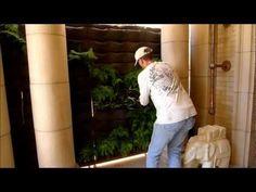 How to Plant a Vertical Garden with Florafelt Plantsonwalls.com