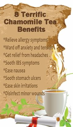 8 Terrific Chamomile Tea Benefits Relieve allergy symptoms Ward off anxiety and tension Get relief from headaches Sooth IBS symptoms Erase nausea Sooth stomach ulcers Ease skin irritations Disinfect minor wounds Ibs Symptoms, Allergy Symptoms, Chamomile Tea Benefits, Curcuma Benefits, Stomach Ulcers, Coconut Health Benefits, Natural Antibiotics, Healthy Oils, Healthy Detox