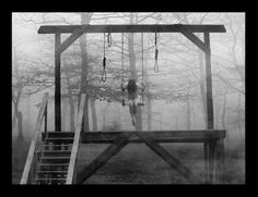 Maybe this is where Layla likes to be on the swing and kills herself there