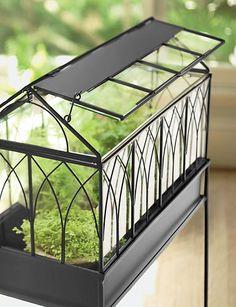 make it yourself stained glass wardian case Terrarium Plants, Glass Terrarium, Succulent Terrarium, Terrarium Wedding, Terrarium Ideas, Pot Plants, Victorian Terrariums, Mini Greenhouse, Paludarium