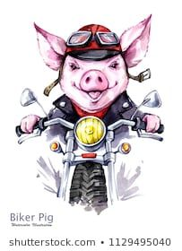 Watercolor grange pig in jacket on motorbike. Symbol of 2019 year. Perfect for T-shirts, posters, invitations, cards, phone cases. Animals And Pets, Cute Animals, Panda Wallpapers, Pig Drawing, Pig Art, This Little Piggy, Winter Fun, Funny Animal Pictures, Christmas Pictures