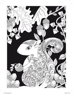 Éjjeli erdő Színezőkönyv fekete háttérrel