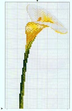 Calla Lily cross stitch - 1