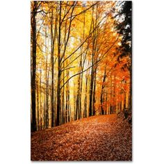 Trademark Fine Art Yellow Moment Canvas Art by Philippe Sainte-Laudy, Size: 22 x 32, Multicolor