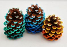 Pinecone decorations in an ombre scheme. You could do various shades of reds and greens for christmas, oranges and yellows for halloween, reds whites and blues for Independence day.... #HTL #NatureRepurposed