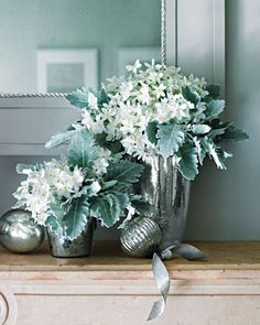 Love the seafoam color... dusty miller, paperwhites and silver. Ahhh. <3