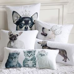 PB Teen Royal Pets Pillow Covers, Chihuahua ($30) ❤ liked on Polyvore featuring home, home decor, throw pillows, pbteen, canvas home decor, embroidered throw pillows, rectangular throw pillow and animal throw pillows