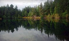 Moran State Park In USA