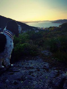 Puddefjorden in my view - Løvstakken, Bergen, Norway