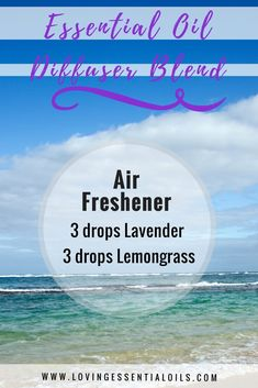 Essential Oil Diffuser Blend AIR FRESHENER: 3 drops lavender, 3 drops lemongrass