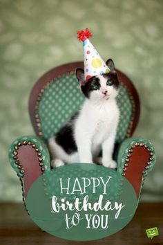 Happy birthday !  Now I will have my TREAT !!! Yes ... cake and ice cream 2 scoops !!! Thanks !!!! Oooooooo !