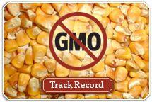 Organic Valley - Genetic Engineering - GMOs