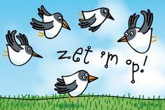 """Gratis e-card: """"Zet hem op!"""""""