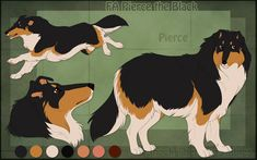 STS Dog - Pierce by ShockTherapyStables on DeviantArt