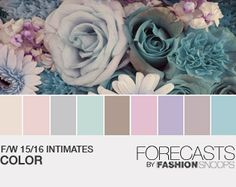 F/W 15/16 Womens Intimates Color