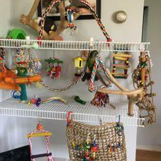 Idea of how to hang/store extra bird toys. Diy Parrot Toys, Diy Bird Toys, Diy Toys, Diy Macaw Toys, Cockatiel Toys, Parakeet Toys, Bird Play Gym, Homemade Bird Toys, Diy Bird Cage