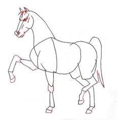 Color pages for kids. How to draw a Horse? Step by step penciling